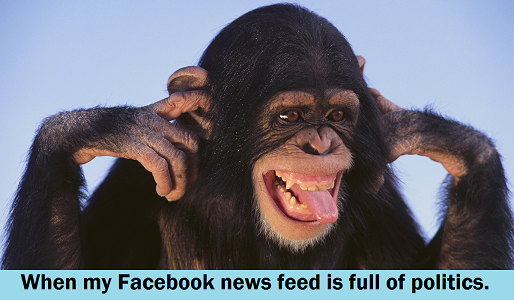 FB full of politics cant hear you chimp resize