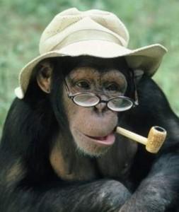 Professor Primate